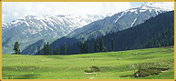 best resort in gulmarg